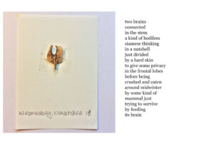 Calendar-2020,-18-November-with-poem-by-Christian-Hüls-copie