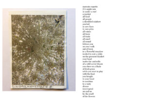Calendar-2020,-8-November-with-poem-by-Christian-Hüls-copie
